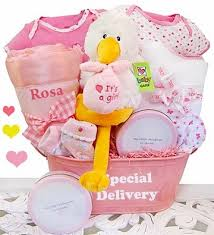 Delivery Gift Baskets Special Delivery Gift Basket