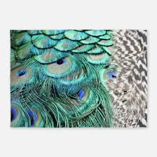 Peacock Area Rugs Peacock Feather Rugs Peacock Feather Area Rugs Indoor Outdoor Rugs