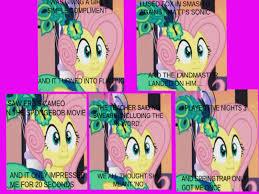 Mlp Fluttershy Meme - image fanmade mnfbkd fluttershy meme jpg my little pony