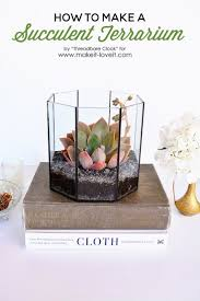 145 best terrariums open and closed images on pinterest