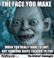 Sarcastic Memes - the face you make when you have to shit sarcastic meme pmslweb