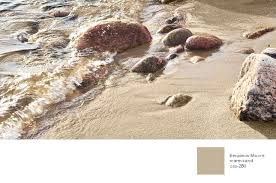 natural and neutral paint color from benjamin moore