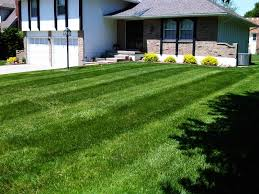 Lawn Free Backyard Affordable Lawn Mowing Service In Raytown Mo Get A Free Online