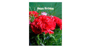 Red Carnations Red Carnations Happy Birthday Postcard Zazzle Com