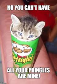 No You Are Meme - catatude no you can t have all your pringles are mine image