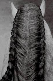 hairstyles for horses horse hair styles pinteres