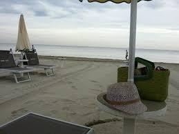 bagno per cani spiaggia per cani recensioni su bagno dario marittima