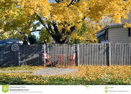 golden autumn on the backyard stock photo image 6279640