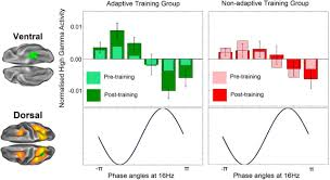 training working memory in childhood enhances coupling between