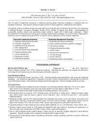 Sample Resume Of Executive Assistant by Ceo Resume Examples Best Ceo Resumes Top 10 Resume Samples