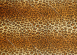 leopard fabric texture leopard fabric fabric lugher texture library