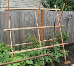Rasberry Trellis 84 Best Fruit Garden Images On Pinterest Fruit Garden Trellis