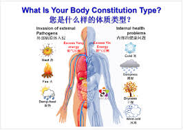 body constitution types and right food diet facts 5color diet