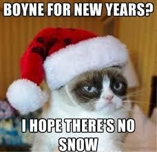 Grumpy Cat New Years Meme - 80 great funny new year memes