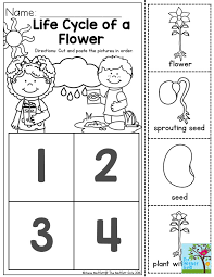 best 25 life cycle of plants ideas on pinterest lifecycle of a