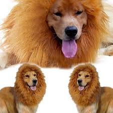 Halloween Costumes For Dogs Large Pet Costume Lion Mane Wig For Dog Christmas Halloween