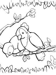 spring themed printable coloring pages birds on a branch