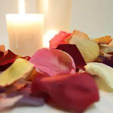 Rose Petals Dried Rose Petals