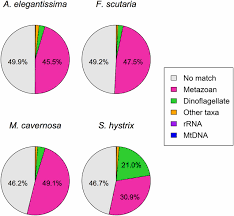 de novo assembly and characterization of four anthozoan phylum