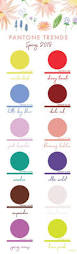 the 25 best pantone chart ideas on pinterest pantone color