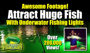 underwater fishing lights attract fish green dock
