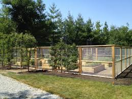 Container Vegetable Gardening Ideas by Enclosed Backyard Vegetable Garden House Design With Wood And Wire