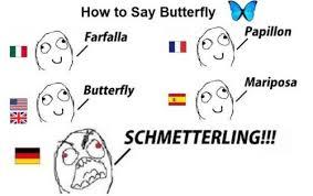 German Butterfly Meme - butterfly in german imgur