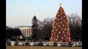white house tree gettyimages sb10068531o