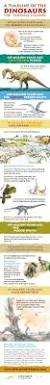 a timeline of the dinosaurs infographic infographic history