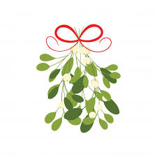 curly ribbon mistletoe with bow and curly ribbon isolated on white