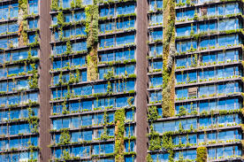 Wall Gardens Sydney by Vertical Garden Or Living Wall Is A Wall Covered With Living