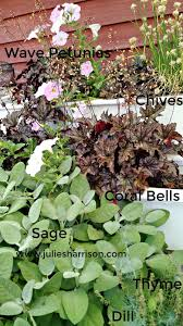 julie the garden fairy herbs inspiration and tips for growing