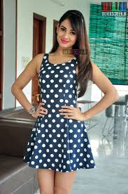 Sonal Chauhan At Dictator Promotions U2013 Silverscreen In