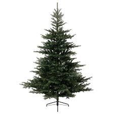 kaemingk everlands grandis fir christmas tree 7ft charlies direct