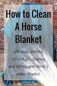 Bedroom Furniture Pieces For An Amigo Crossword Best 25 Horse Blanket Ideas On Pinterest Horse Care Horse Tips