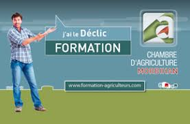 formation chambre d agriculture chambre d agriculture du morbihan 56 vannes questembert
