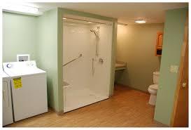 23 amazing basement bathroom picture ideas yoyh org