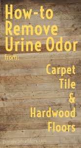 flooring how to get urine stains out of hardwood floors floor