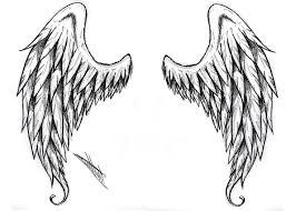 wing design elaxsir