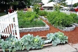 small vegetable garden ideas australia small vegetable garden