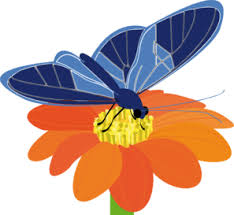 blue butterfly with flower clip at clker com vector clip