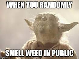Weed Memes - tgif here are the best weed memes of the week slyng com