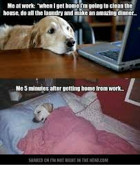 Working From Home Meme - me at work whenlget home im going to clean the house do all the