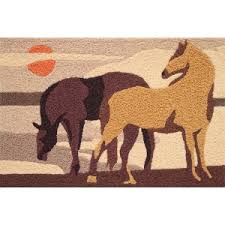 Outdoor Rugs For Horses Most Feed Garden Decorative Indoor Outdoor Rugs Horses