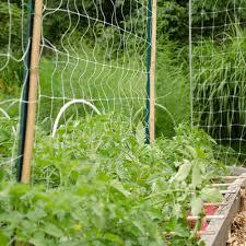 Garden Trellis Netting Trellis Netting Plant Supports Amleo Com