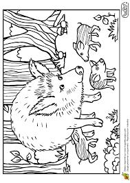 dessin à colorier d u0027une maman laie et de ses petits marcassins