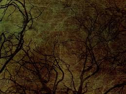 the halloween tree background 28 spooky halloween backgrounds and textures resources maca is