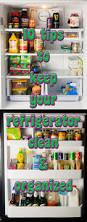 Kitchen Cleaning Tips Best 25 Refrigerator Cleaning Ideas On Pinterest Refrigerator