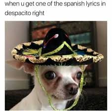 Spanish Memes - dopl3r com memes when u get one of the spanish lyrics in