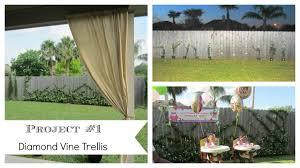 Vine Trellis Ideas 5 Cheap Easy Outdoor Space Diy Ideas Outdoor Living Space Youtube